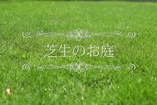 宮原福樹園様 芝生施工紹介