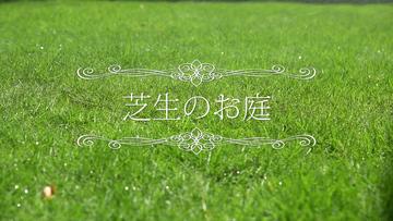 宮原福樹園様 芝生施工紹介のサムネイル